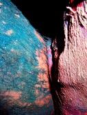 Paint-Skin, digital photograph, dimensions variable, 2004