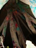 Tree Painting, post-performance, Art Annex grounds, UNM, 2004